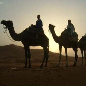 Highlights of Morocco (Cosmos Tours)