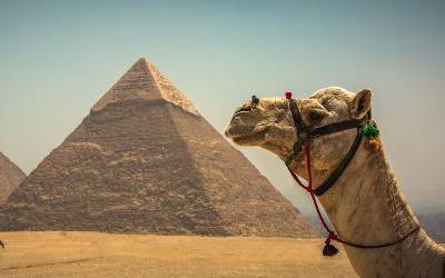 Best of Egypt- Private (Ciconia Travel)