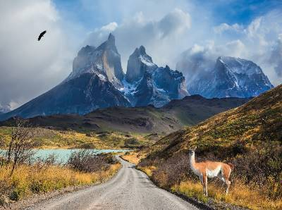 Best of Chile from Atacama to Patagonia (Insight Vacations)